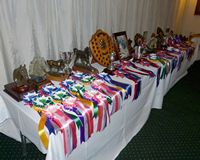 The Grand Array of Awards laid out - thanks to Pennie for working everything out