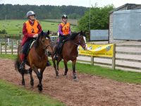 2 Kathleen Mcghee with Foxghyll's Folly and 17 Lynsey Bainbridge with Amber IV